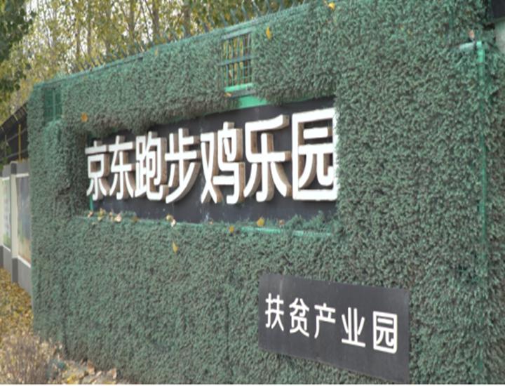【扶贫有道】武邑县:电子商务让扶贫有了加速