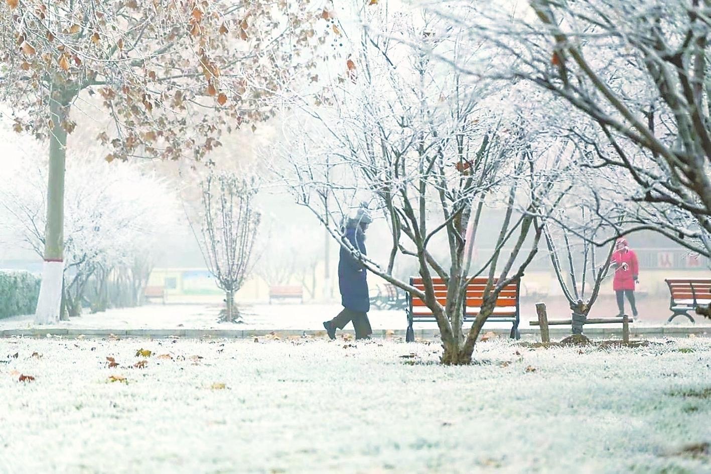 """雾凇光临 湖城一夜变""""仙境"""""""