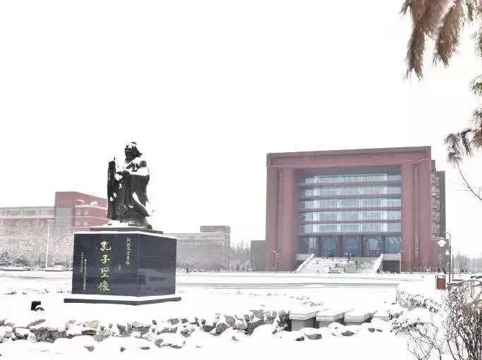 記錄丨保定與雪相遇的24小時
