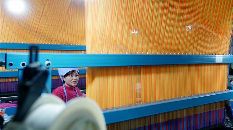 河北南宮:羊絨產業助推縣域經濟發展