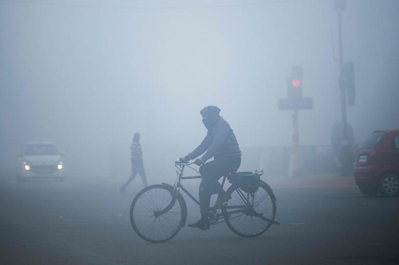 大霧影響新德里交通