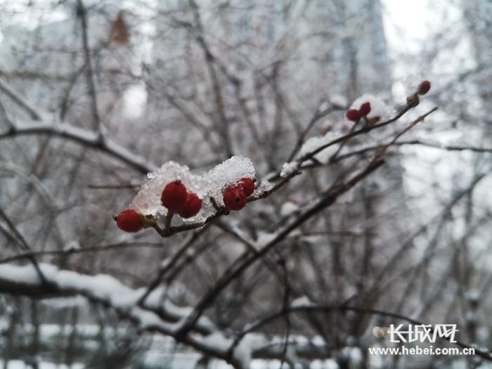 唐山迎来2020年首场降雪