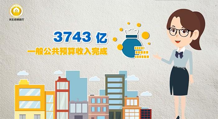 【MG动画】2020年河北财政账本