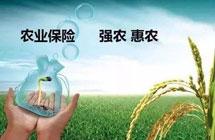 农业保险提供3.6万亿元保障