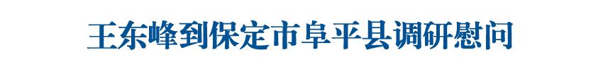 王东峰到保定市阜平县调研慰问