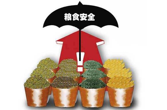 双向受益——农产品贸易不会影响我国家粮食安全