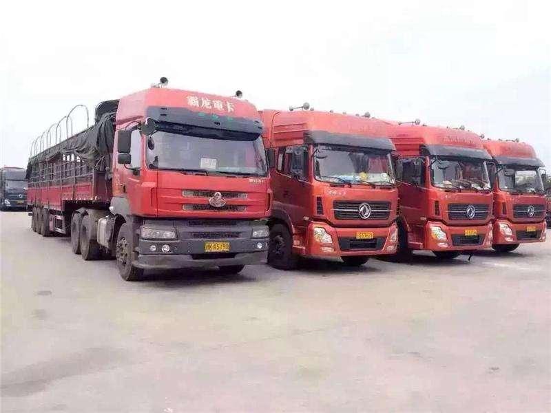 省会330辆运输车准备就绪 免费为抗击疫情提供服务