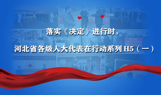 落实《决定》进行时,河北省各级人大代表在行动!