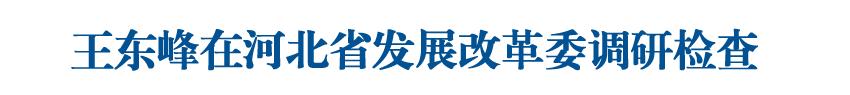 王东峰在河北省发展改革委调研检查