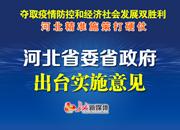 河北省委省政府出台实施意见