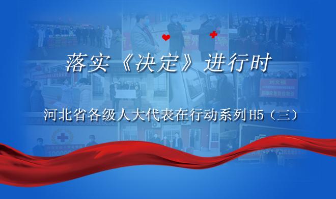 落实《决定》进行时,河北省各级人大代表在行动!(三)
