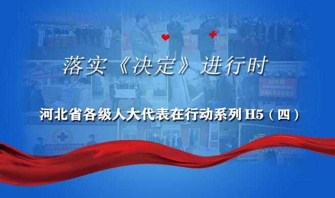 H5 | 落实《决定》进行时,河北省各级人大代表在行动!(四)