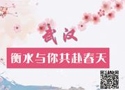 【微视频】武汉!衡水与你共赴春天