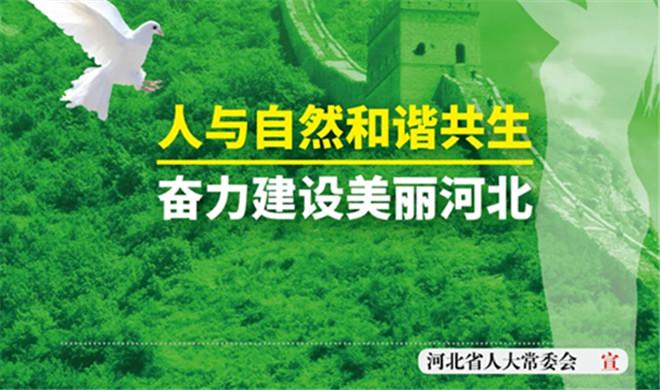 海报|依法全面禁止食用野生动物 保障人民群众生命健康安全