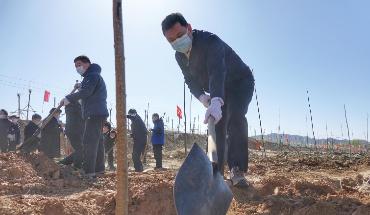 秦皇岛市开展春季义务植树活动