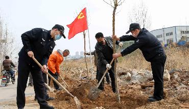 秦皇岛经济技术开发区:警民共建通村绿化路