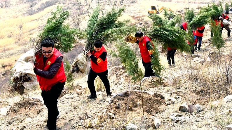 【高清组图】河北永年:党员志愿者让荒山披绿装