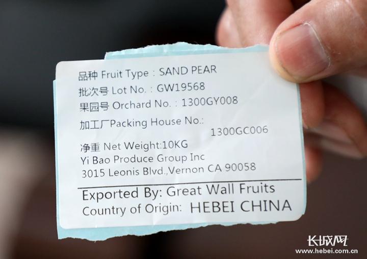 【稳外贸 企业行】晋州长城经贸:抗击疫情 拓展渠道 扩大鸭梨出口数量