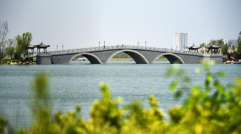 济南:华山湿地春吹绿