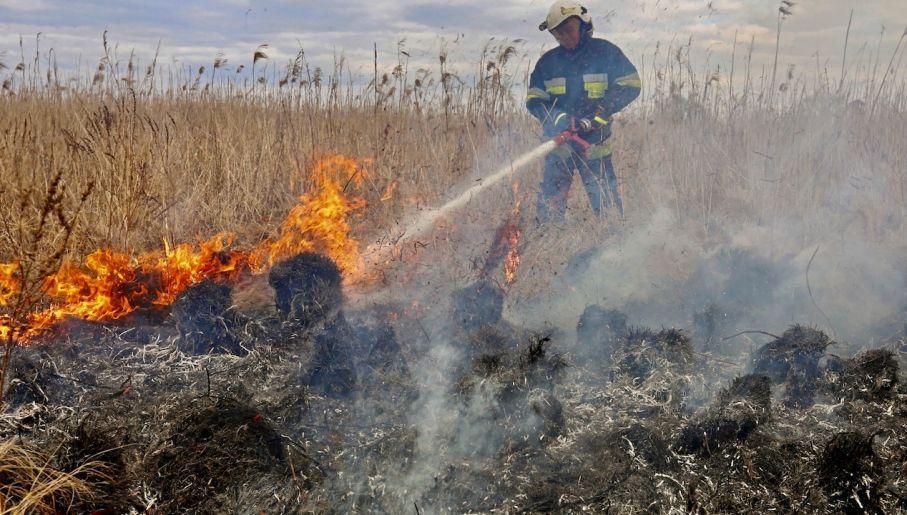 波兰国家公园发生火灾
