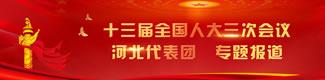 【专题】十三届全国人大三次会议河北代表团专题报道
