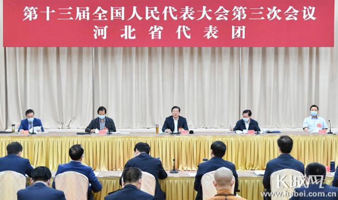 河北省代表团审议全国人大常委会工作报告 王东峰许勤等发言