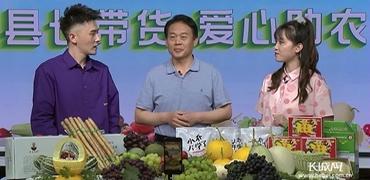 县长带货 饶阳优质瓜果蔬菜走进千家万户