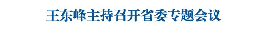 王东峰主持召开省委专题会议