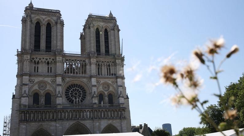 巴黎圣母院前广场重新开放