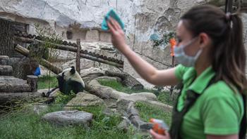 莫斯科动物园重新开放