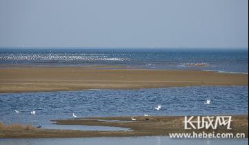 北戴河區推進生物多樣性保護