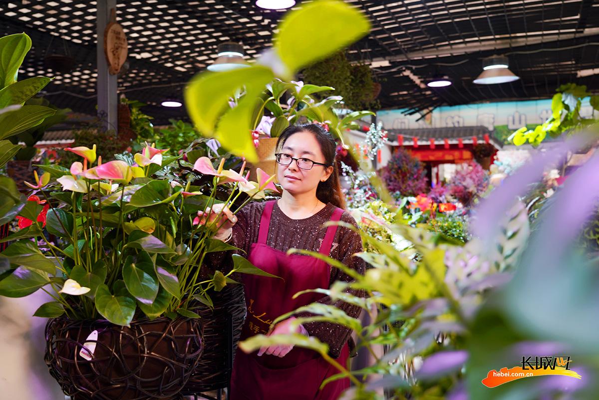 唐山开平:直播花卉销售忙