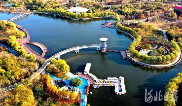 河北石家莊:環城水系初冬美景惹人醉