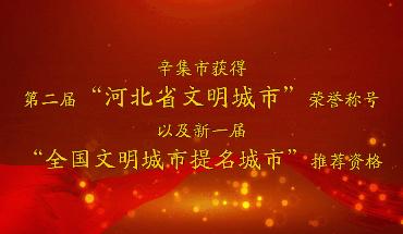 """辛集市成功當選第二屆""""河北省文明城市"""""""
