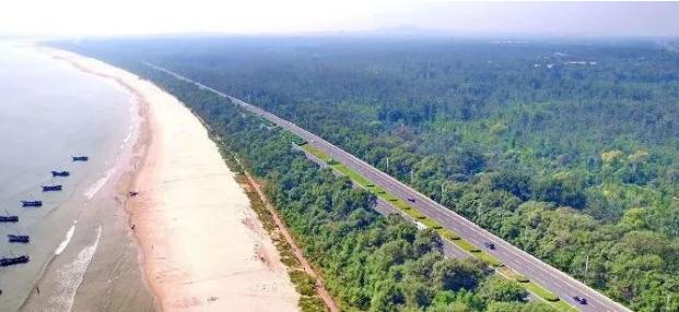 《秦皇岛市沿海防护林条例》正式实施