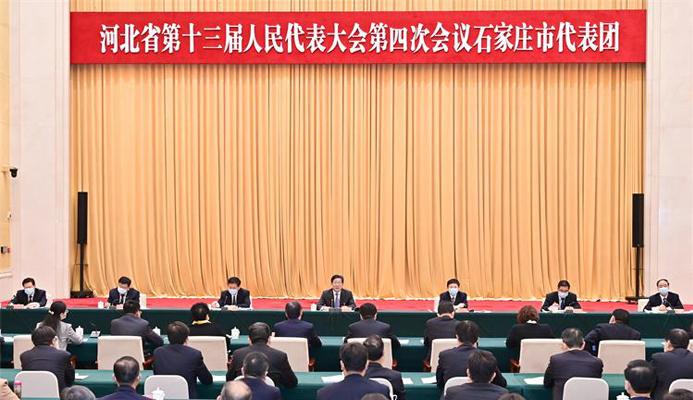 王東峰參加省十三屆人大四次會議石家莊市代表團審議