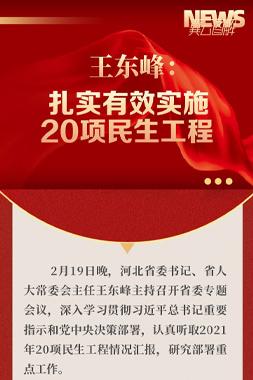 圖解 | 王東峰:扎實有效實施20項民生工程