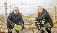 張東河:為發展鄉村旅游闖新路尋良策