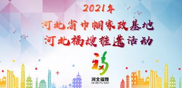 2021年河北省巾幗家政基地 河北福嫂推選投票