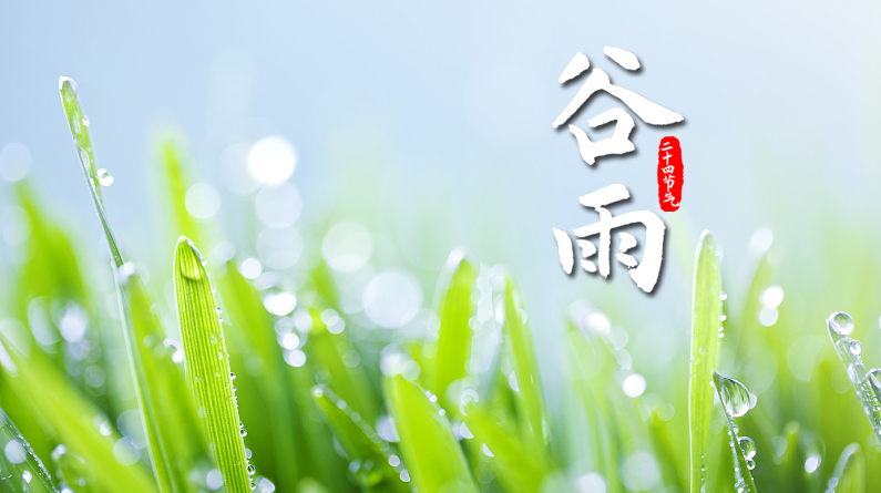 谷雨丨谷得雨而生 夏天要醒了