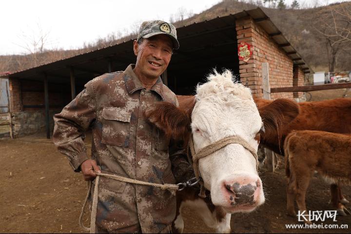 河北丰宁:产业兴农业旺 激起乡村振兴一池春水