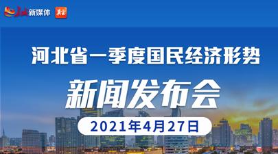 """""""河北省一季度国民经济形势""""新闻发布会"""