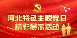 河北特色主題黨日評選展示活動