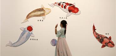 """河北博物院""""觀魚"""""""