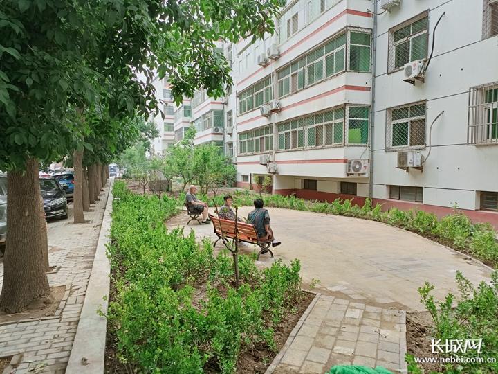 滄州市新華區持續改善人居環境