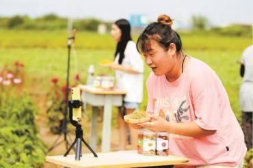石家庄赵县:线上线下齐发力 中药种植促增收