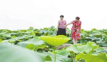 新河:持续推进环境综合治理 乐享美丽乡村