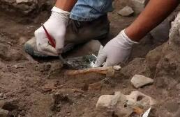 考古百年,这些人带我们聆听泥土下传出的文明絮语