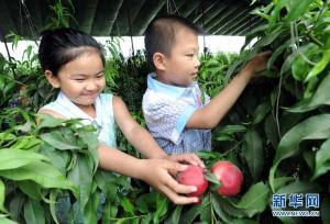 田间欢度儿童节