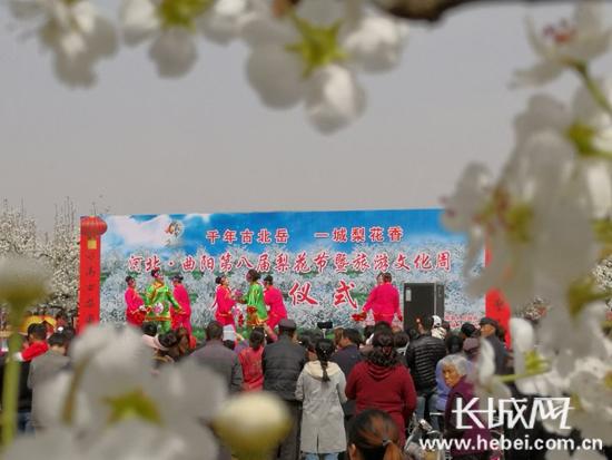 保定曲阳县第八届梨花节暨刘伯温四肖中特料2018文化周开幕